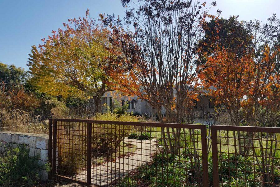 גן הדגמה בסתיו