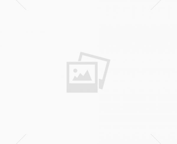 קורס עיצוב צמחייה בנוף במשתלת הוכברג